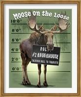 Moose on the Loose Fine Art Print