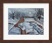 The Red Tailed Hawk Fine Art Print