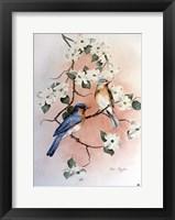 Bluebirds and Dogwood Fine Art Print