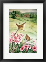Carolina Wren Fine Art Print