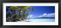 Tropical Paradise Fine Art Print