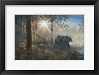 Shadow In The Mist Fine Art Print