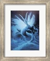 Capricorn - Sketch Fine Art Print
