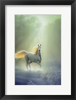 Touched By The Aurora Fine Art Print