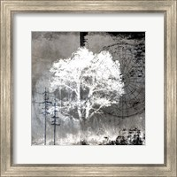 July Tree 10 Fine Art Print