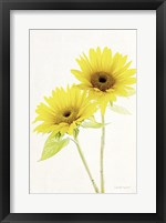 Light and Bright Floral VII Fine Art Print