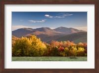 Autumn Splendor Fine Art Print