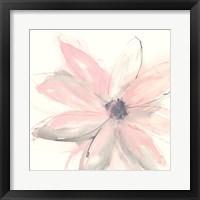 Blush Clematis I Fine Art Print