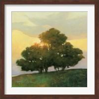 Spice Tree Fine Art Print