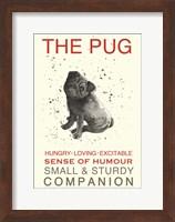 Black Pug Fine Art Print