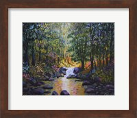 Wooded Stream Fine Art Print