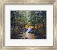 Wooded Stream Fine Art Print