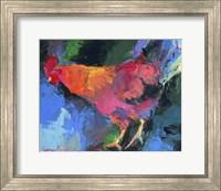 Chicken Fine Art Print