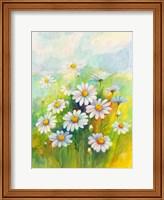 Daisies Fine Art Print