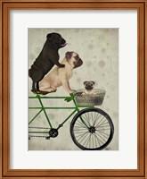 Pugs on Bicycle Fine Art Print
