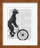 Poodle on Bicycle, Black Fine Art Print