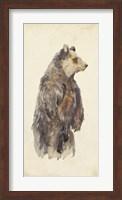 Brown Bear Stare II Fine Art Print