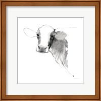 Cow II Dark Square Fine Art Print
