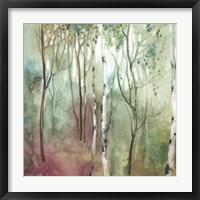 Birch in the Fog I Fine Art Print
