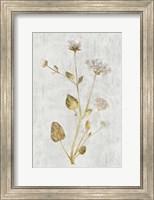 Botanical Gold on White I Fine Art Print