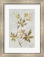 Botanical Gold on White IV Fine Art Print