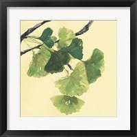 Gingko Leaves I Dark Fine Art Print