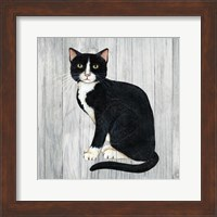 Country Kitty I on Wood Fine Art Print