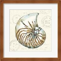 Coastal Breeze V Fine Art Print