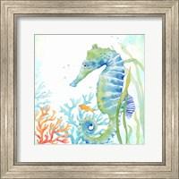 Sea Life Serenade III Fine Art Print