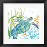 Sea Life Serenade IV Fine Art Print