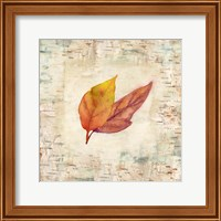 Nature Walk Leaves I Fine Art Print