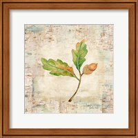 Nature Walk Leaves II Fine Art Print