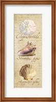 Oceanum Shell Panel Beige I Fine Art Print