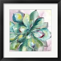Succulent Watercolor I Fine Art Print