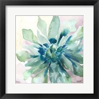 Succulent Watercolor III Fine Art Print