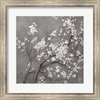 White Cherry Blossoms I on Grey Crop Fine Art Print