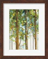 Forest Study II SPC Fine Art Print