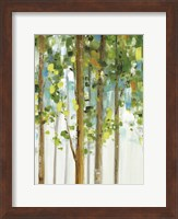 Forest Study I SPC Fine Art Print