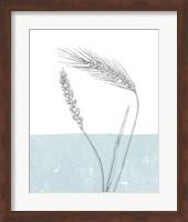Wheat Fine Art Print