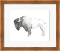 Bison Dark Fine Art Print