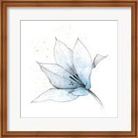 Blue Graphite Flower IX Fine Art Print