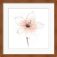 Coral Graphite Flower II Fine Art Print