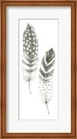 Feather Sketches VIII Fine Art Print