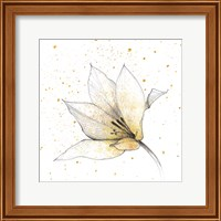 Gilded Graphite Floral IX Fine Art Print
