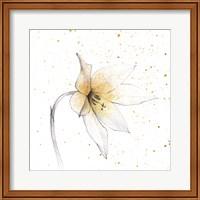 Gilded Graphite Floral VIII Fine Art Print