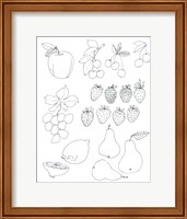 Line Art Fruits Fine Art Print