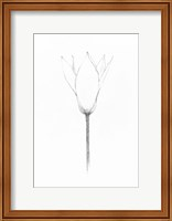 Pencil Floral X Fine Art Print