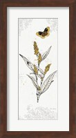 Harvest Fields VII Fine Art Print