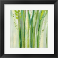 Longstem Bouquet II Square III Fine Art Print