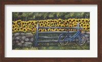 Resting At Buttonwoods Fine Art Print
